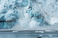 _MG_4499a (markbyzewski) Tags: alaska ugly calving margerieglacier glacierbaynationalpark