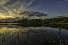 Nigel Pond at dusk (kidda63) Tags: