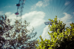 Before Your Very London Eye... (P1ay) Tags: blue red wallpaper plants plant green london clouds canon airplane photography aqua bokeh londoneye explore waterloo photograph pictureoftheday cityoflondon stockimages backgroundimage cityofwestminster backgroundwallpaper onedirection bokehlicious canon60d lightrooms cloudsinbluesky londoneyeimage bokehwallpaper cloudsinblueskies p1ay bokehinlondon imagesoflondoneye redcapsuleinlondoneye londoneyestockimage acontactshomepage