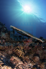 2013 11 VOISIN MALDIVES-2751