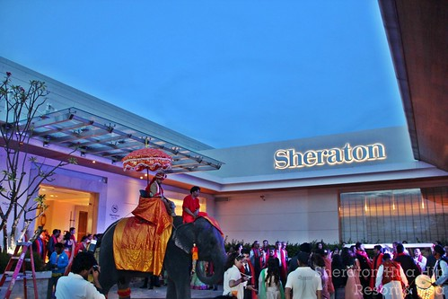 Indian Wedding 9-12 May 2014