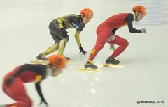 Short track speed skating (Landahlauts) Tags: japan speed track skating andalucia short granada velocidad hielo chine jpn rpc patinaje universidaddegranada chn universiada deportesport deporteuniversitario universiada2015
