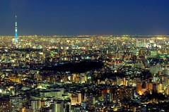 Tokyo Sky Tree view  (runslikethewind83) Tags: nightphotography light urban tower japan night lights tokyo asia cityscape pentax ikebukuro       2015  skytree