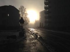 The end of the world! (Random Forum) Tags: sun mist snow zombie apocalypse