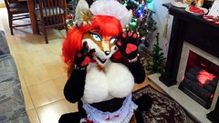 AURORA SPENCER SEXY FURSUIT (aurorathelittlevixen) Tags: sexy furry aurora fox spencer maid vixen fursuit