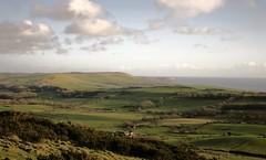 Beautiful Dorset (Adam Swaine) Tags: uk england green english field canon landscape coast countryside seasons britain coastal dorset fields british counties swaine 2013