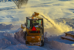 Cleaning up in between two major storms (Debajyoti M) Tags: winter snow canada fredericton newbrunswick maritime autofocus flickrlover naturalcolours nbphoto flickrlovers nikond5100 winter2015