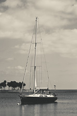 Sailboat (klick4) Tags: ocean sky beach water clouds sailboat boat sailing gulf palmtree stpete