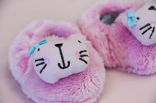 Kitty Slippers 1