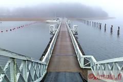 vintola photography (vintola) Tags: leica bridge autumn fall fog architecture finland nebel outdoor herbst bro brcke hst syksy naantali dimma sumu silta ndendal vintola kailokailonsilta