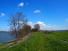 Dijkweg (ynlray) Tags: mer paysbas digue hollande muiderberg ijmeer