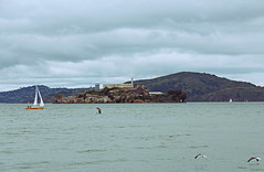 Alcatraz Island (zgrial) Tags: sanfrancisco california park history sailboat landscape island gulls alcatraz sanfranciscobay lomoeffect federalprison nationalhistoriclandmark militaryprison zgrial