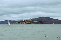 Alcatraz Island (zgrial) Tags: sanfrancisco california park history sailboat landscape island gulls alcatraz sanfranciscobay lomoeffect federalprison nationalhistoriclandmark militaryprison zgrial