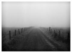 Analogue fog (alanpeu1) Tags: mist mamiya fog fence track lane hp5 analogue posts 1000 watery thriepmuir 645s