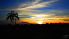 Sunrise (Ptruzz Dias) Tags: sunset paisagem pelotas rs riograndedosul laranjal