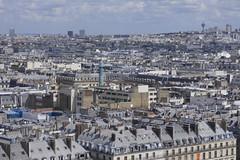 2016.04.14.029 PARIS - La grande roue, Les toits et la colonne Vendme (alainmichot93) Tags: paris france seine architecture ledefrance toit arbre parc mange placedelaconcorde granderoue 2016 parcdestuileries