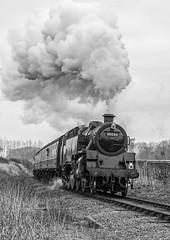 Good Repair (4486Merlin) Tags: england bw southwest europe unitedkingdom transport somerset steam railways westcountry gbr bishopslydeard westsomersetrailway heritagerailways exbr brstd4mt264t 8004380072 sd50thclosureanniversary