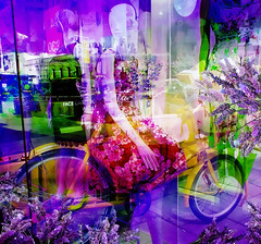 The Lavender Lane (abstractartangel77) Tags: mannequin bicycle wheels lavender brightonlanes