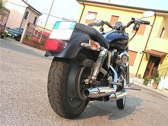"harley_davidson_sportster_1200_33 • <a style=""font-size:0.8em;"" href=""http://www.flickr.com/photos/143934115@N07/27076120533/"" target=""_blank"">View on Flickr</a>"