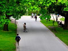 summer in the park (kaylovesvintage) Tags: city summer green amsterdam citycenter vondelpark lovestorie