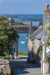 20160616-7D2L6765 (ndall) Tags: scilly tresco