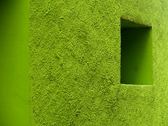 La fentre verte ouverte (CcileAF) Tags: city colour green texture window canon town vert ville minimalisme