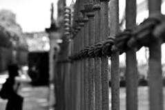 (omarpappi) Tags: road street blackandwhite bw blancoynegro monochrome 35mm mono monocromo blackwhite nikon noiretblanc streetphotography firenze biancoenero nwn monocrome artphoto florance artphotography allaperto streetbw nikond300 nikonflickraward