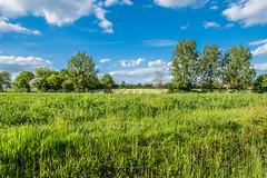 Paysage de campagne ( Philippe L PhotoGraphy jesuisParis) Tags: france nature champs arbres chateau fr campagne centrevaldeloire eureetloire nuagges labazochegouet