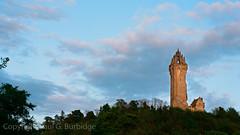 Scotland2016-45260008 (Paul Burbidge) Tags: color film monument scotland hasselblad wallace 500cm ektar100