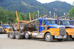 Ireland (25) (RyanP77) Tags: ireland trucking myrtle point oregon logger logging log truck kenworth t800 whitlog whit kw timber trucks fleet