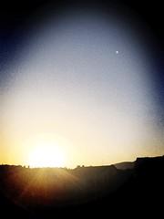 Sun.  (matissekadini) Tags: city sun nature sunshine birds sunrise photo sunny goodmorning