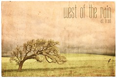 West of The Rain (Oobleck!) Tags: california old sky orange cloud brown painterly tree green art texture nature stain yellow clouds vintage painting paper landscape one golden oak artistic background postcard grunge unitedstatesofamerica dream scenic peaceful overcast nobody dirty retro stained canvas card single zen worn backgrounds romantic stains aged rough damaged toned solitary distressed idyllic tinted tranquil cloudscape textured dreamscape grungy wrinkled mottled revival solitarytree creased coarse stylised discolored zenlike