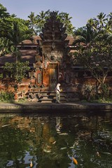 Pura Tirtha Empul (Syahrel Azha Hashim) Tags: travel light vacation bali holiday detail reflection water beautiful architecture 35mm indonesia temple prime pond colorful dof getaway sony details naturallight tropical handheld shallow simple touristattraction oneperson ubud fishpond humaninterest placeofworship singleperson 2015 a7ii colorimage tampaksiring puratirthaempul sonya7 syahrel ilce7m2