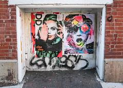 DEEDEE Street art & Dain (ZUCCONY) Tags: 2016 nyc streetart newyork unitedstates us bobby zucco bobbyzucco pedrozucco street art graffiti ny murals
