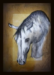 Guiseppe (patrick.verstappen) Tags: horse animal painting painted art texture textured twitter guiseppe sigma photo picassa pinterest pat picmonkey portrait paper ipernity ipiccy inspiration inkt sweet belgium flickr facebook gingelom google fabriano scetch pencil drawing watercolor acryl pen brush
