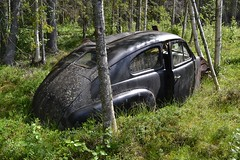 Volvo PV 444 (Flash 86) Tags: volvo sweden sverige pv 444