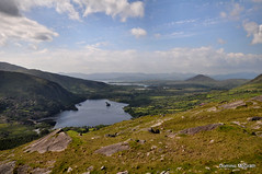 Glanmore Lake (mcgrath.dominic) Tags: cocork rhododendrons healypass cokerry bearapeninsula cahamountains glanmorelake