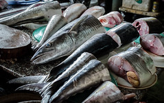 a piece of fish (Just_Maze) Tags: fish market vietnam