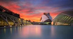 Valencia (Anto Camacho) Tags: sunset sky urban water valencia buildings edificios colours calatrava cac comunidadvalenciana valenciancommunity