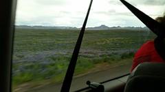 Monday: Kjóastaðir – Sandá – Árbúðir Mountain Cabin (EdRyder) Tags: iceland ishestar kjoluriceland kjolur