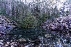 20160627-14-Disappearing Tarn (Roger T Wong) Tags: water outdoors rocks walk australia hike scree tasmania hobart mtwellington bushwalk tramp 2016 wellingtonpark dolerite disappearingtarn sony2470 rogertwong sel2470z sonyfe2470mmf4zaosscarlzeissvariotessart sonya7ii sonyilce7m2 sonyalpha7ii