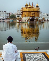 """""""Practice truth, contentment and kindness; this is the most excellent way of life. One who is so blessed by the Formless God renounces selfishness, and becomes the dust of all."""" (Guru Granth Sahib Ji, 51) -beautiful capture by @ashwanikushwaha  (sikhexpo) Tags: sikh punjab sikhism punjabi singh kaur sikhi sikhexpo"""
