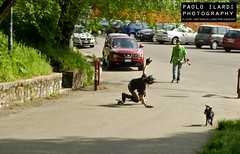 longboard. (Paolo Ilardi) Tags: street urban italy snow sport reflex nikon italia raw event snowboard dslr urbanlandscape shredding eventi shred sportive freebord ishootraw freeboard freebording d7000