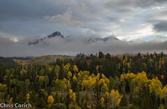 _MG_3055.jpg (notsnot) Tags: autumn usa mountains canon colorado unitedstates roadtrip co sanjuans ridgway sanjuanmountains autumncolor ef24105f4l cr9 5dmkii westdallascreekroad
