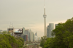Pastel City Brilliant Trees (Ben Roffelsen) Tags: trees toronto green love by train grey pastel tracks inspired rails tone brilliance blogto torontoist
