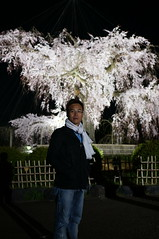 R (Richard, enjoy my life!) Tags: flower japan night kyoto sony richard   sakura   nex6