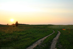 Pilgrimage (gráce) Tags: road light sunset sky sun tree nature landscape fields
