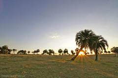 Pôr-do-sol (fabsciack) Tags: sunset sunrise farm pôrdosol santacatarina fazenda nascerdosol fraiburgo rotadaamizade valedocontestado