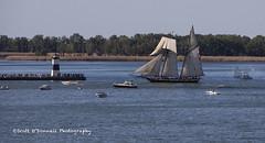 Tall Ship (scottnj) Tags: lighthouse ship lakeerie sail tallship scottnj
