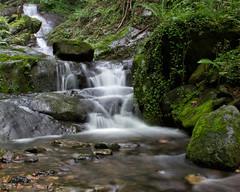 Arroyo del Pagasarri (Txulalai) Tags: naturaleza agua bilbao seda euskadi cascadas pagasarri